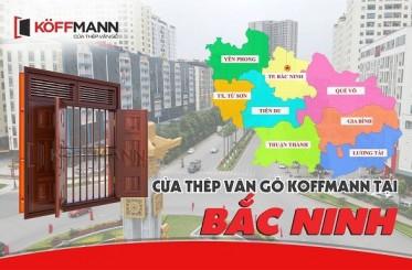 Địa chỉ thi công, lắp đặt, báo giá cửa thép vân gỗ tại Bắc Ninh
