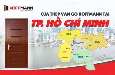 Địa chỉ thi công, báo giá cửa thép vân gỗ TPHCM