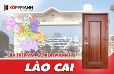 Đại lý phân phối cửa thép vân gỗ Lào Cai uy tín, tin cậy