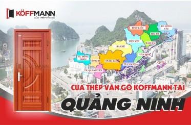 Đại lý phân phối cửa thép vân gỗ tại Quảng Ninh