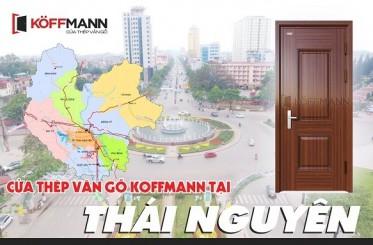Địa chỉ mua cửa thép vân gỗ Thái Nguyên uy tín, tin cậy