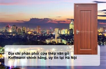 Địa chỉ mua và lắp đặt cửa thép vân gỗ ở Hà Nội đẹp và nhanh nhất